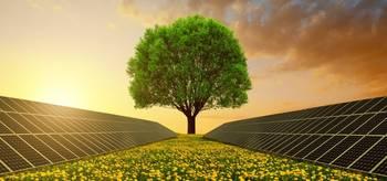 Puu - Puhdas energia
